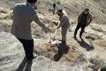 ۲۱۰ اصله نهال در پارک جنگی شبلی دماوند غرس شد