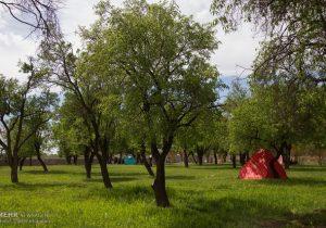 ممنوعیت تجمع در تفرجگاههای استان تهران همزمان با روز طبیعت