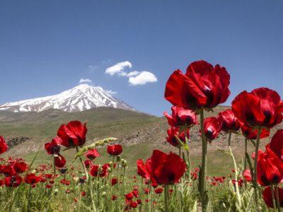 همه چیز درباره سرنوشت مرتفعترین قله ایران .. «دماوند» + سند