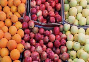 مشکلی در تنظیم بازار نداریم، اما اجازه صادرات سیب را نمیدهند